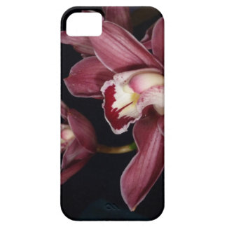Pink Orchid Flowers iPhone 5 Case