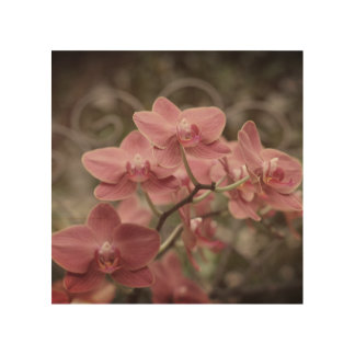 Pink Orchid flowers wood wall art