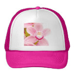 Pink Orchid Hats