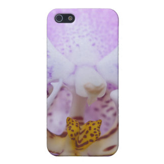 Pink Orchid iPhone 5 Covers