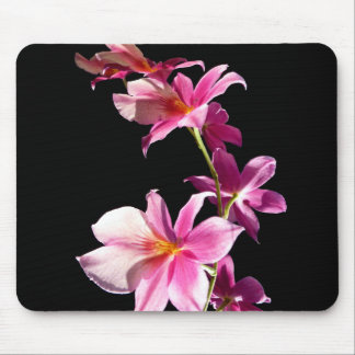 Pink Orchid. Mouse Mat