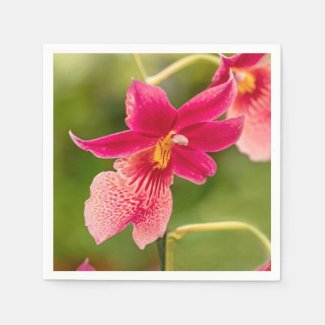 Pink Orchid Paper Napkins