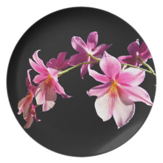 Pink Orchid. Plate