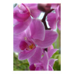 Pink Orchid R.S.V.P. Personalized Invitation