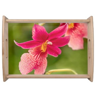 Pink Orchid Serving Tray