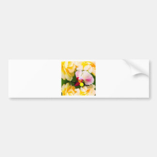 Pink orchid with tennis ball bumper sticker