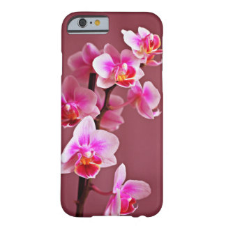 Pink Orchids Barely There iPhone 6 Case