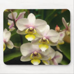 Pink Orchids Mousepad