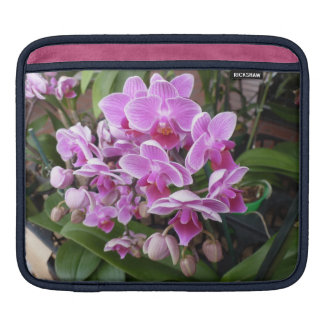 Pink Orchids Sleeves For iPads