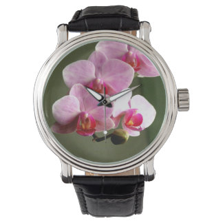 Pink Orchids Watch