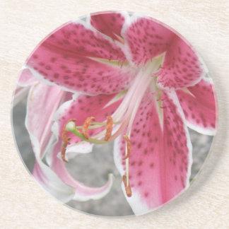 Pink Oriental Lily Beverage Coasters