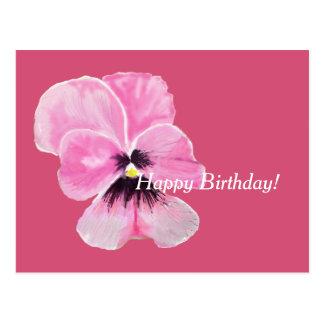 Pink Pansy Birthday Card Postcard