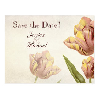 Pink Parrot Tulip Save the Date Postcard
