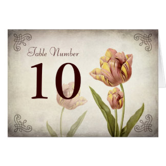 Pink Parrot Tulip Table Number Card