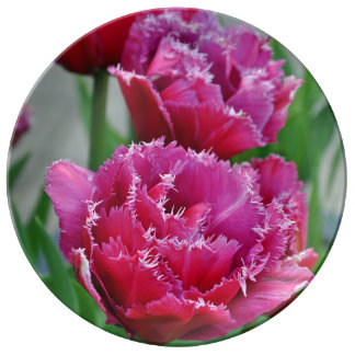 Pink parrot tulips floral print plate