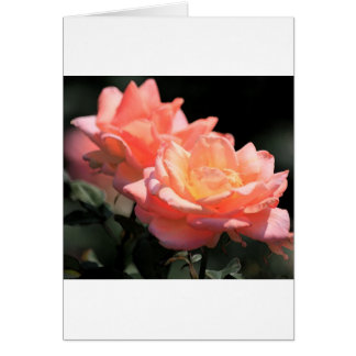 Pink Passion Greeting Cards