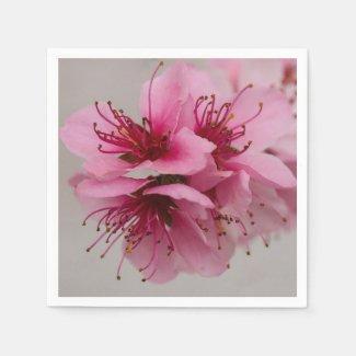 Pink Peach Blossom Napkins