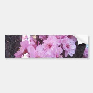 Pink Peach Blossoms Bumper Sticker