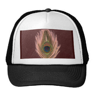 Pink Peacock Feather D Hat