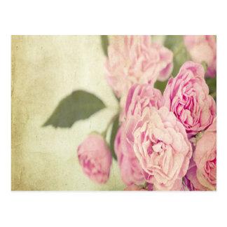 Pink, peonies,vintage,floral,grunge,worn,template, postcard
