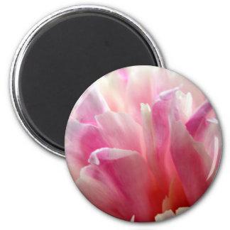 Pink Peony 6 Cm Round Magnet