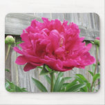Pink Peony Mouse Pad