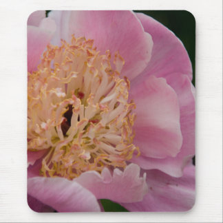 Pink Peony | Rosa Pfingstrose Mouse Pad