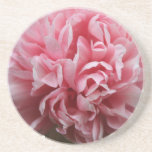 Pink Petals Beverage Coaster