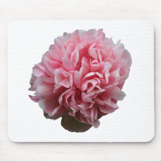 Pink Petals Mousepad