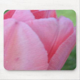 Pink Petals Mouse Pads