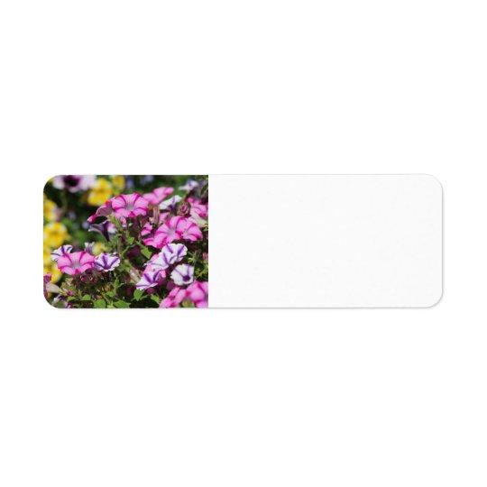 Pink petunia address label