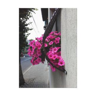 Pink Petunia Blossom Canvas Print