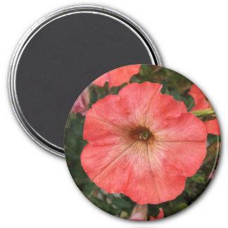 Pink Petunia Magnet