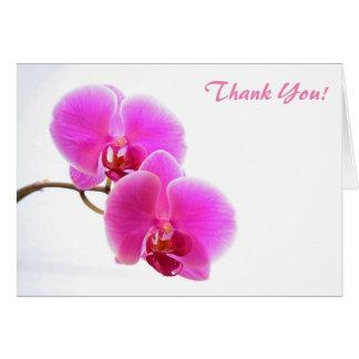 Pink Phalaenopsis Orchid Card