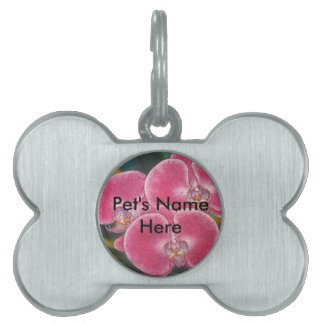 Pink Phalaenopsis Orchids Flowers Pet ID Tag