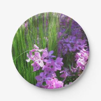 Pink Phlox and Grass Summer Flowers 7 Inch Paper Plate