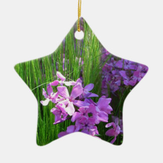 Pink Phlox and Grass Summer Flowers Double-Sided Star Ceramic Christmas Ornament