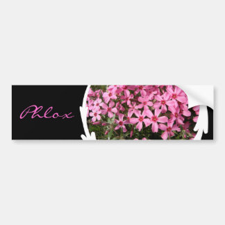 Pink Phlox Car Bumper Sticker