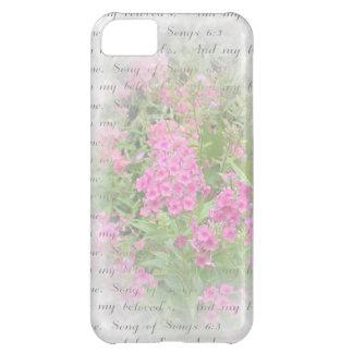 Pink Phlox iPhone 5C Case