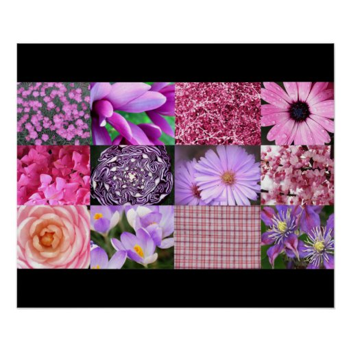 Pink Photo Collage Poster