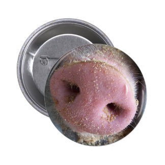 Pink Pig nose close up photograph 6 Cm Round Badge