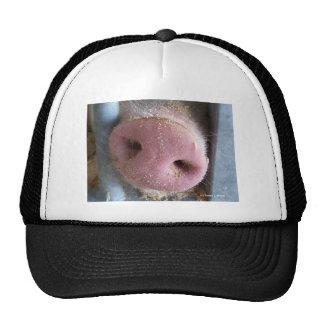 Pink Pig nose close up photograph Mesh Hats