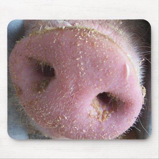 Pink Pig nose close up photograph Mousepads