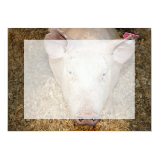 Pink pig with ear tag cute piggie picture personalized invites