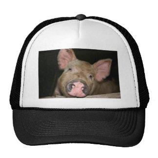 Pink Piglet Mesh Hat