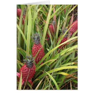 Pink Pineapple Card