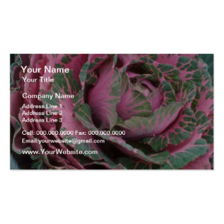 Pink Pink Cabbage flowers Pack Of Standard Business Cards