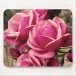 Pink Pirouette Roses Mouse Pad