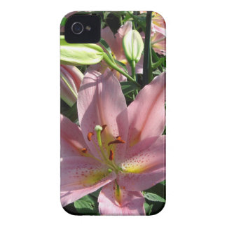 Pink Plants iPhone 4 Cases