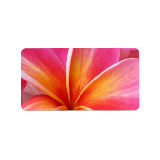 Pink Plumeria Frangipani Hawaii Flower Hawaiian Address Label